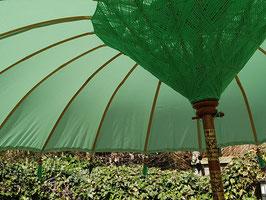 Luxe editie Bali parasol, breedte 180 cm of 250 cm, kleur mintgroen