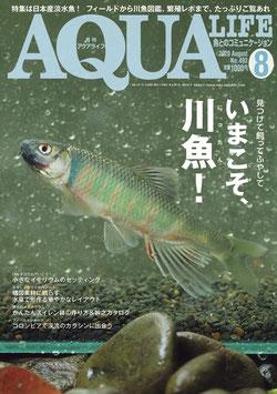 月刊アクアライフ 2020年 08 月号 今こそ、川魚(にったん)! 見つけて 飼って ふやして ー雑誌