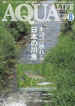 月刊 AQUA LIFE (アクアライフ) 2021年 08月号 雑誌 /エムピージェー ー雑誌