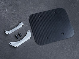 Dry Carbon Number Plate & Stay kit for FTR223