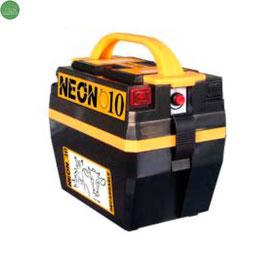 PASTOR ELECTRICO NEON 10