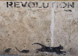 Postkarte: REVOLUTION