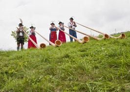 Postkarte: Quintett in den Alpen