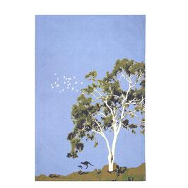 "Geschirrhandtuch ""Eukalyptus-Tree Bridgesiana"" (auch ""Applebox"" genannt)"