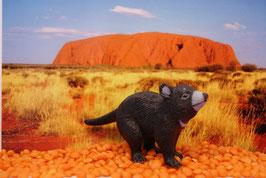 Tasmanian Devil - (deutsch: Tasmanischer Teufel)