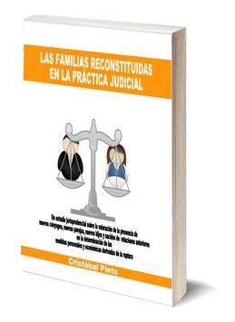 LAS FAMILIAS RECONSTITUIDAS EN LA PRACTICA JUDICIAL