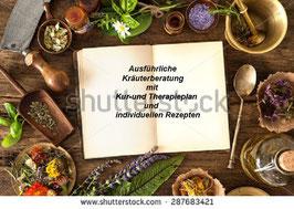 Große ausführliche Kräuter- und Naturheilmittelberatung inkl. Therapieplan und individuellen Rezepturen