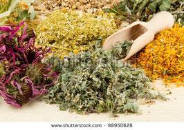 individuelles Rezept für Kräutermischungen, Tee & Kur mit kleiner Beratung