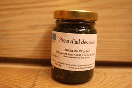 Pesto à l'ail des ours bio 90g