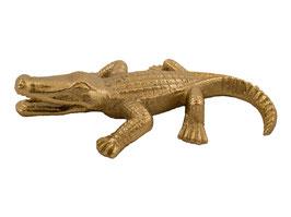 Golden alligator