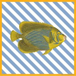 Copperprint x Feierabend -  Kaiserfisch