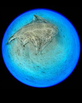 Water Planets IX
