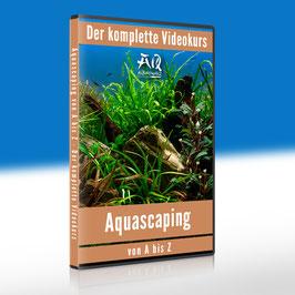 Aquascaping von A bis Z
