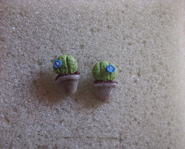 Ohrstecker Kaktus mit blauer Blüten