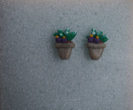 Ohrstecker Kaktus mit lila Blüten