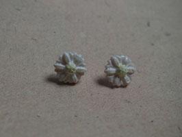 Ohrstecker weisse Blumen