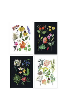 "Momentan AUSVERKAUFT!!  4 Postcards by Brie Harrison ""Nature Series"""