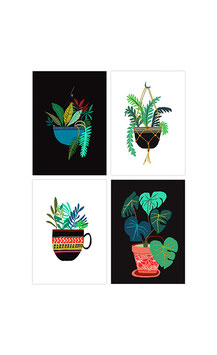 "4 Postcards by Brie Harrison ""Pot Plant Series"""