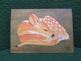 """Postkarte Menker """"Schlafendes Reh"""""""