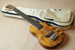 BigIsland EBU-SMP-N Ele.Mini Bass Spalted Maple