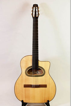 USED/AT Guitars D-hole Nylon Strings #60