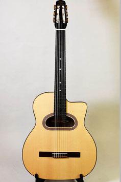 Altamira M01 Classical