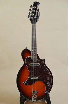 Kentucky KM-300E ElectricMandolin
