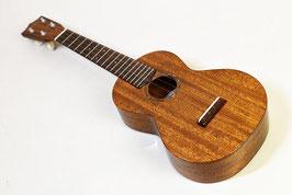 tkitki ukulele AMC-ABALONE Concert【S/N0348】