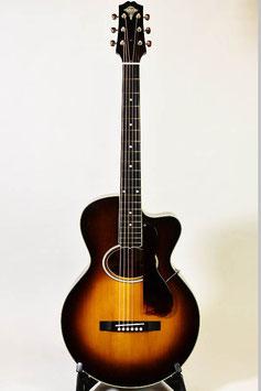 Stringphonic LeRoy Oval Prototype