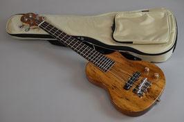 BigIsland EBU-SMP-N Ele.Mini Bass Spalted Maple