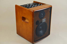 SChERtLER JAM 100w / Wood AMP
