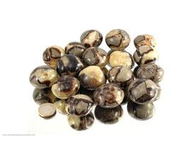 Septarien Pebbles/XL Trommelsteine 0,5 kg Art.Nr.: 11332