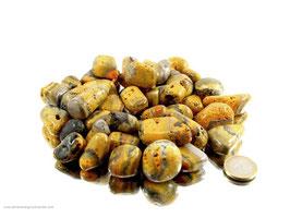 Bumble Bee Jaspis - Eclipse Trommelsteine 0,1 kg