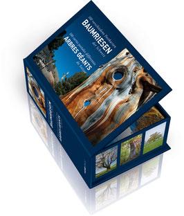 Postkartenbox Baumriesen der Schweiz