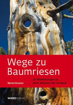 Michel Brunner: Wege zu Baumriesen
