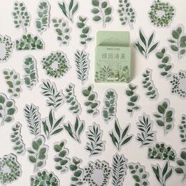 """Stickers """"Eucalyptus"""""""