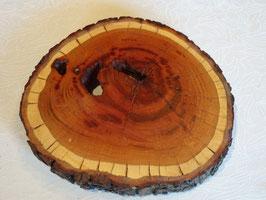 Baumscheibe aus Zwetschge