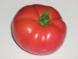 Tibet apple