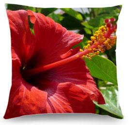 Coussin hibiscus et passiflore