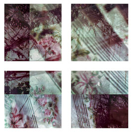 Flowers and Curtains 7