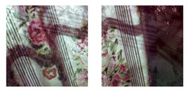 Flowers and Curtains 12