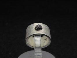 Meteorit 1
