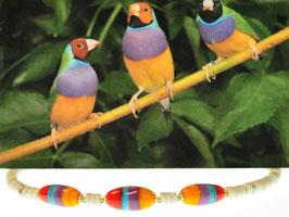 Collier bunt - giracollo colorato