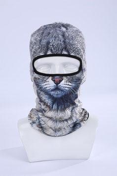 Katze Gray  Kopfpariser