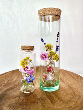 Trockeblumen in the Bottle