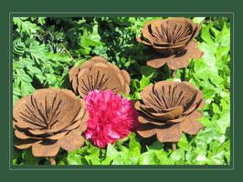 Edelrost Blume -  Anemone