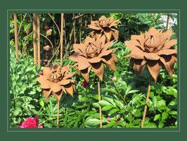 Edelrost Blume - die kleine Strohblume