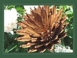 Edelrost Blume - Sunny Flower 03