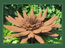 Edelrost Blume - Kaktus Dahlie