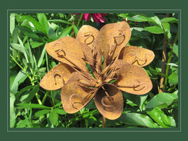 Edelrost Blume - Jungfer im Grünen